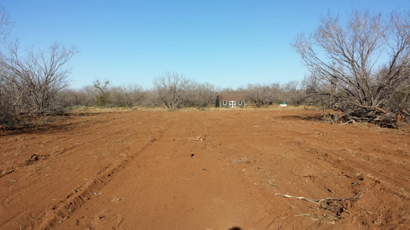 land clearing services-san antonio texas area-4