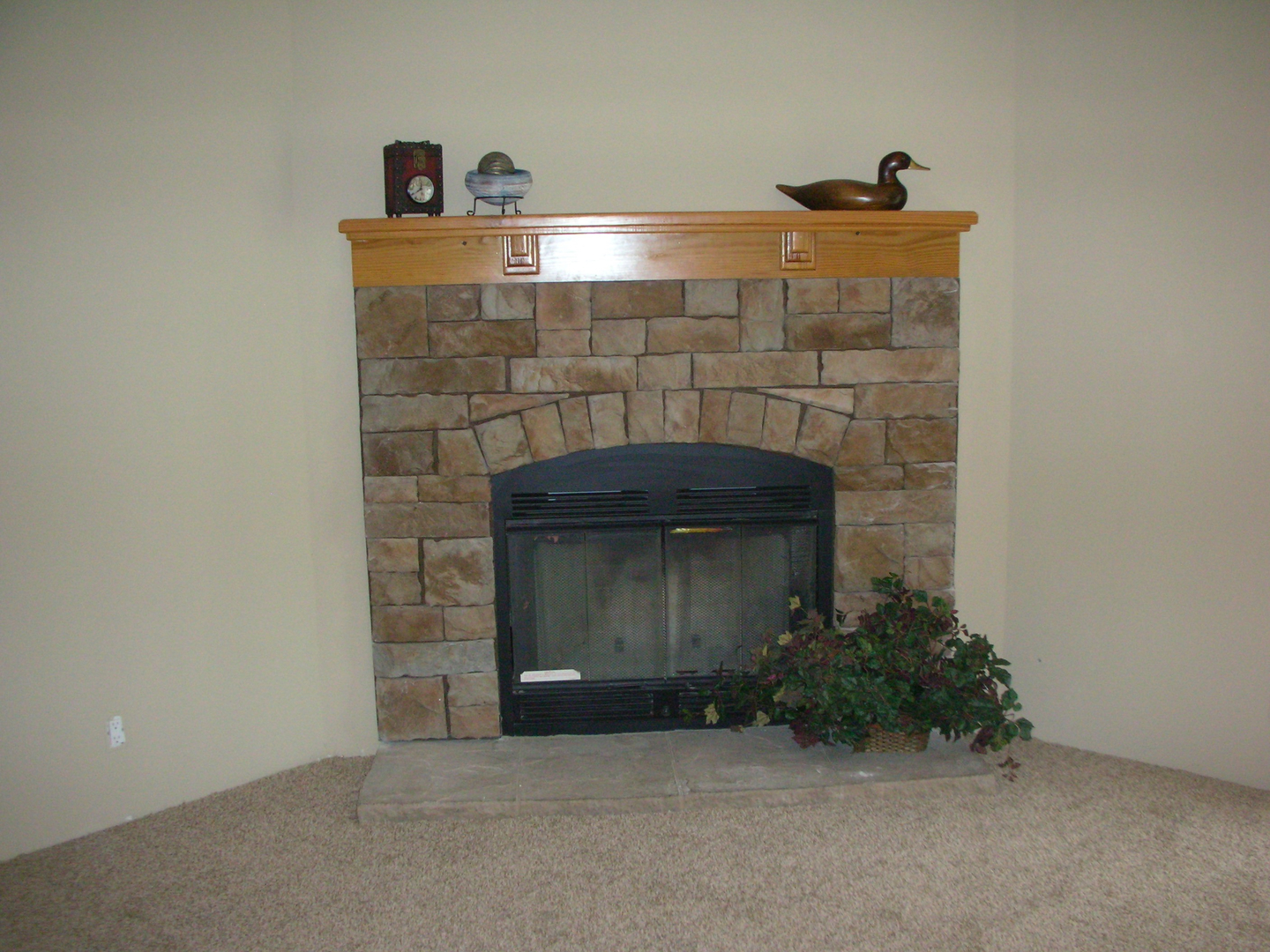 Spring Branch land and home fireplace